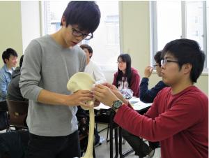 評価を行う上で人間の体の構造について知ります:写真